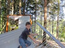 2012-08-29_Baumkronenweg_DSC01330