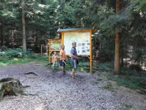 2012-08-29_Baumkronenweg_DSC01256