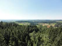 2012-08-29_Baumkronenweg_DSC01258